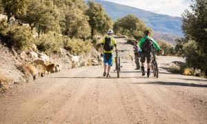 Meeting local goat herders, Spain