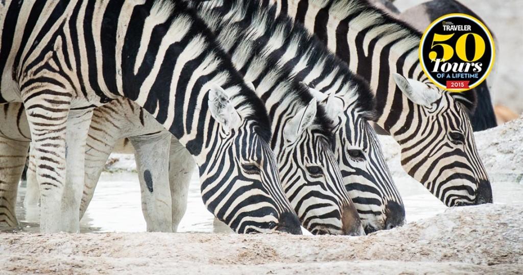 award winning Namibia Africa tour - H+I Adventures