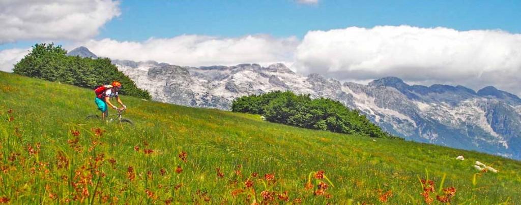 Descending through alpine meadows. Mountain biking Slovenia