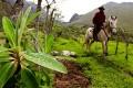 Gaucho in the Andes of Ecuador
