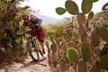 Mountain biking and cacti in Ecuador