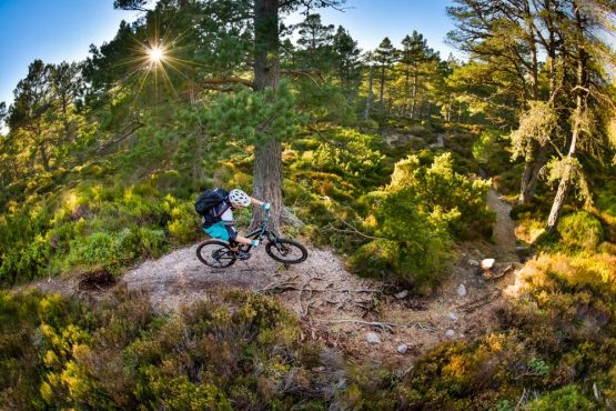 Tackling gnarly single track on our mountain bike tour Cairngorms