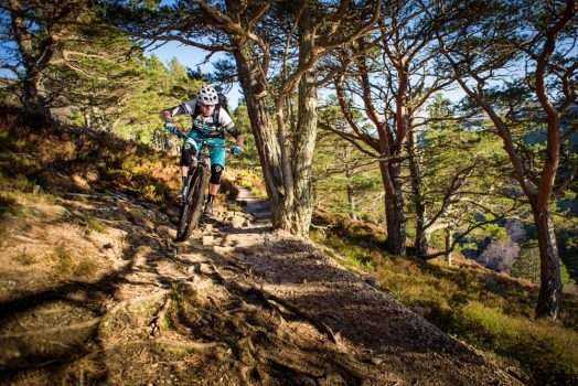 Riding single track near Aviemore on our mountain bike tour Cairngorms