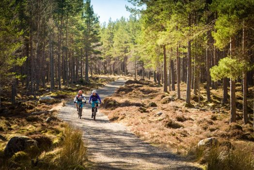 Riding double track on our mountain bike tour Cairngorms