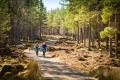 Mountain bikers in the Cairngorms Scotland