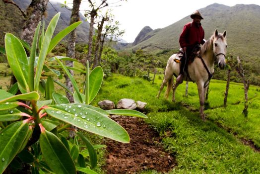 Gaucho in the Andes on our mountain bike tour Ecuador