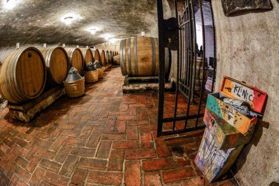 Wine cellar in Hotel Klinec on our mountain bike tour Slovenia