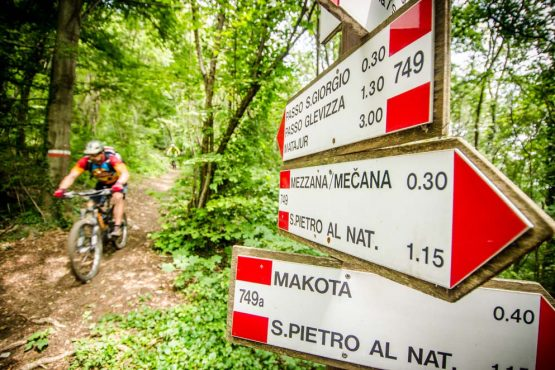 Mountain biking Monte Maggiore on our mountain bike tour Slovenia