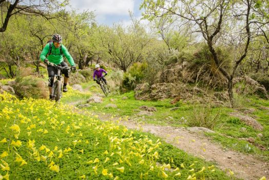Riding wooded singletrack on our mountain bike tour Spain