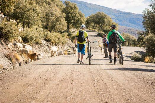 Meeting a local goat farmer on our mountain bike tour Spain