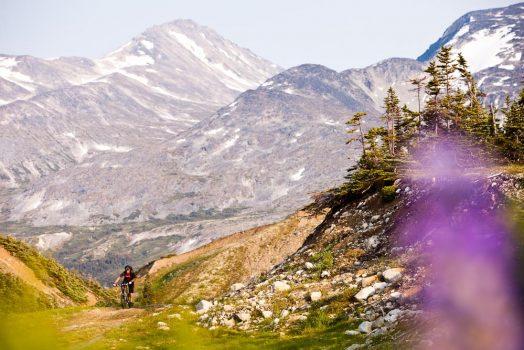 Mountain biking Montana Mountain on our mountain bike tour Yukon