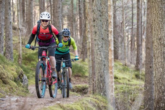 Mountain bikers in the forest, coast-to-coast Scotland mountain bike tour