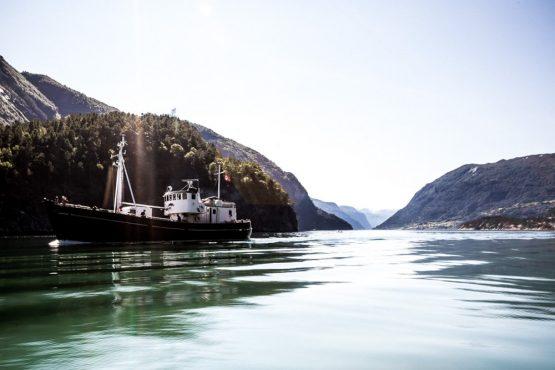 Mountain bike tour Norway - the calm fjords