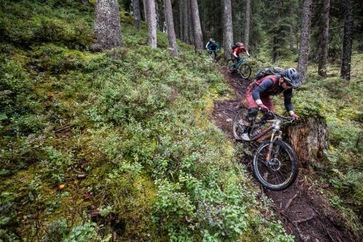 Thomas Vanderham leads the pack through a rooty singletrack on our mountain bike tour Switzerland vacation.