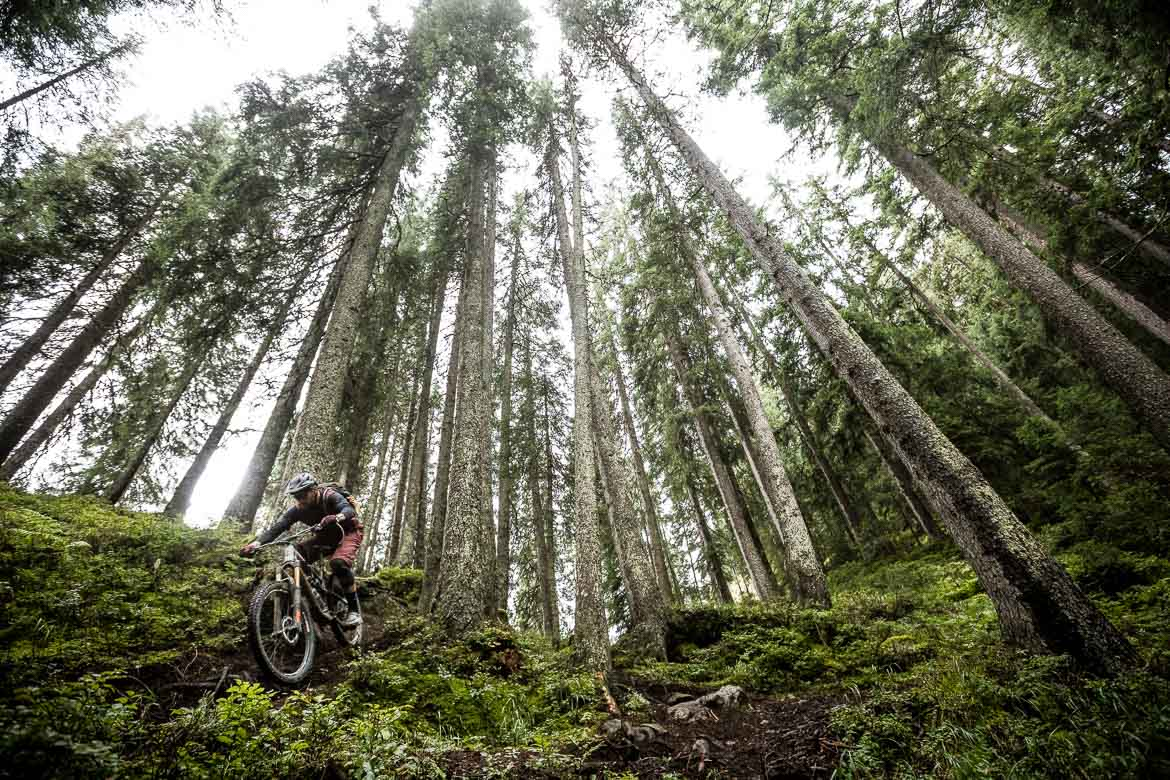 Thomas Vanderham in the forests above Davos in our mountain bike tour of Switzerland.