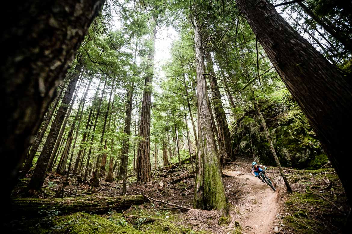 Mountain biking in British Columbia in Photos - H+I Adventures