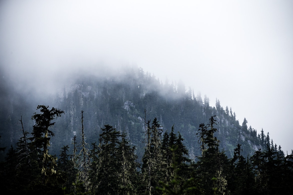 British Columbia in photos showing the changing faces of the BC forests