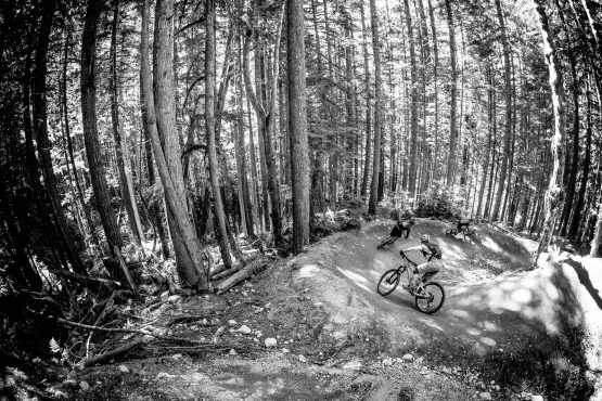 Mountain bikers in a train of riders through the thick BC forests of Canada