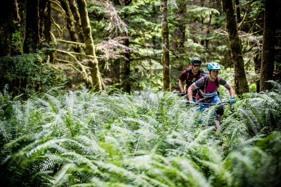 Guided Mtb holidays help you find the way in BC, Canada. Especially through the ferns!