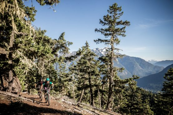 Singletrack climb in BC, Canada on H+I Adventures MTB holiday