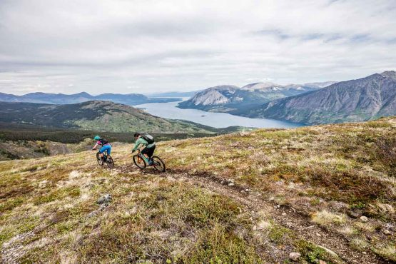 Endless singletrack trails on the mountain bike tour Yukon, Canada