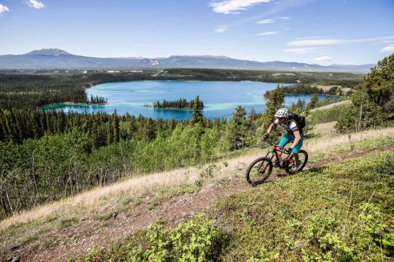 Our mountain bike tour guide David leads the way in the Yukon