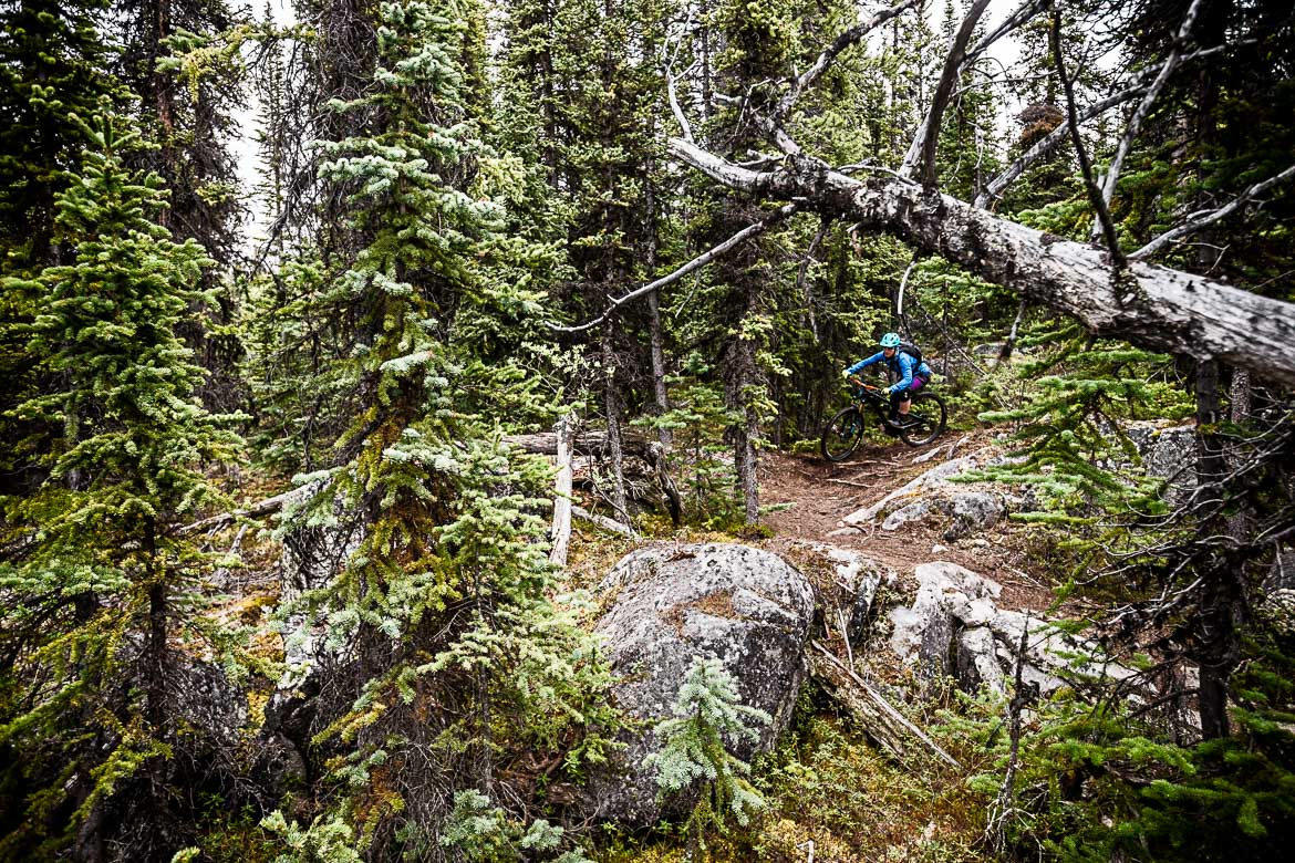 Seeing the Yukon in Photos shows what an amazing MTB vacation spot looks like