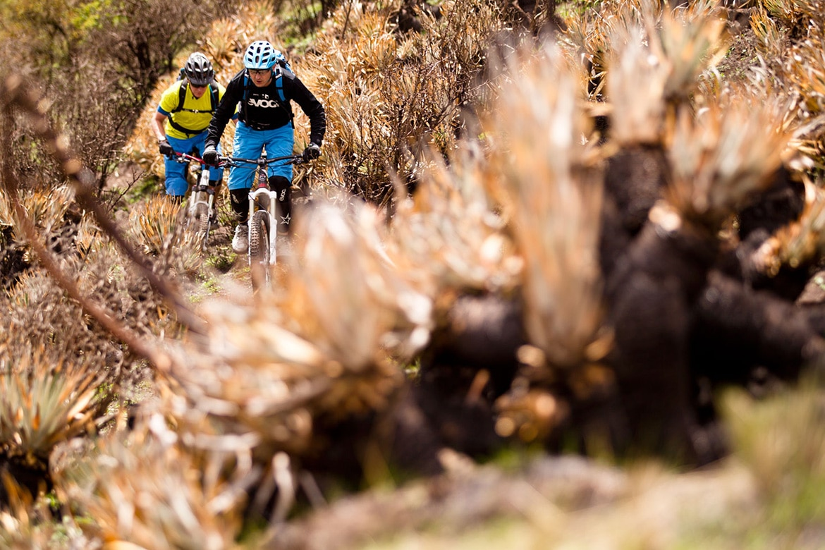 Riding through the vegetation of Ecuador during a mountain bike adventures South America