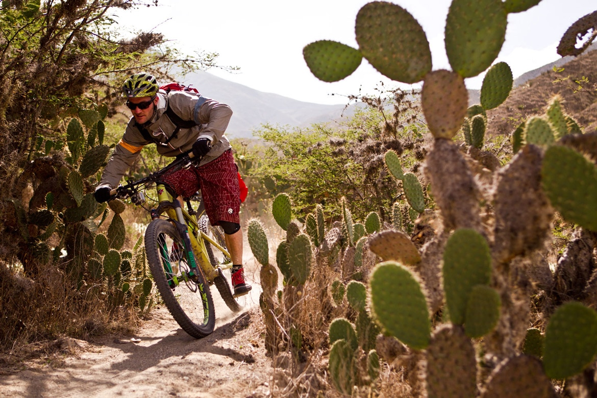 Dodging cactus in Ecuador during a mountain bike adventures South America