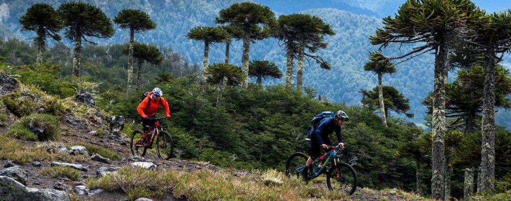 H+I Adventures mountain bike tours homepage