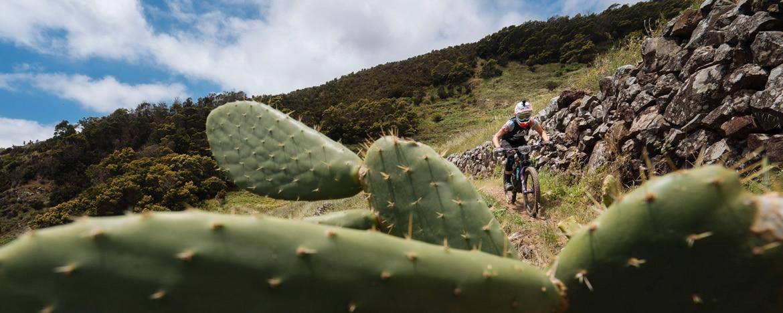 EWS Travel Madeira - single track trails through cacti