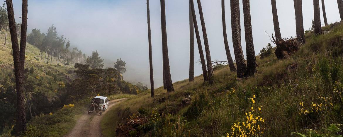 EWS Travel Madeira - shuttle runs to the top of Madeira's trails
