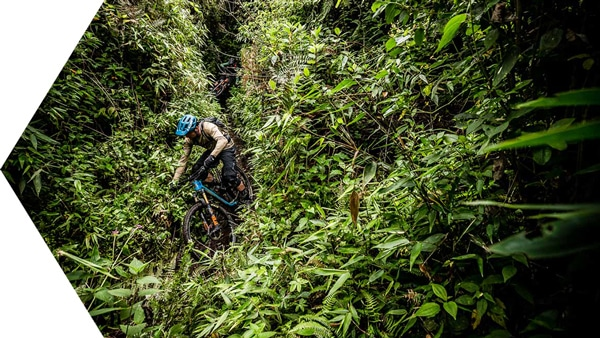 Riding into the jungle on our mountain biking Ecuador tour