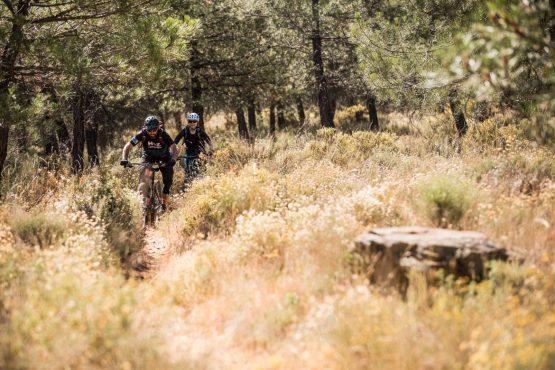 Blasting through the bushes - Mountain bike tour Spain