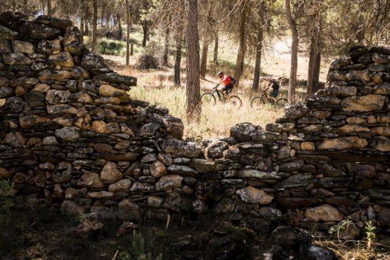 E-MTB tour of Spain climbing through trees