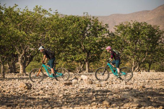 Climbing between the trees on a mountain bike safari tour Namibia